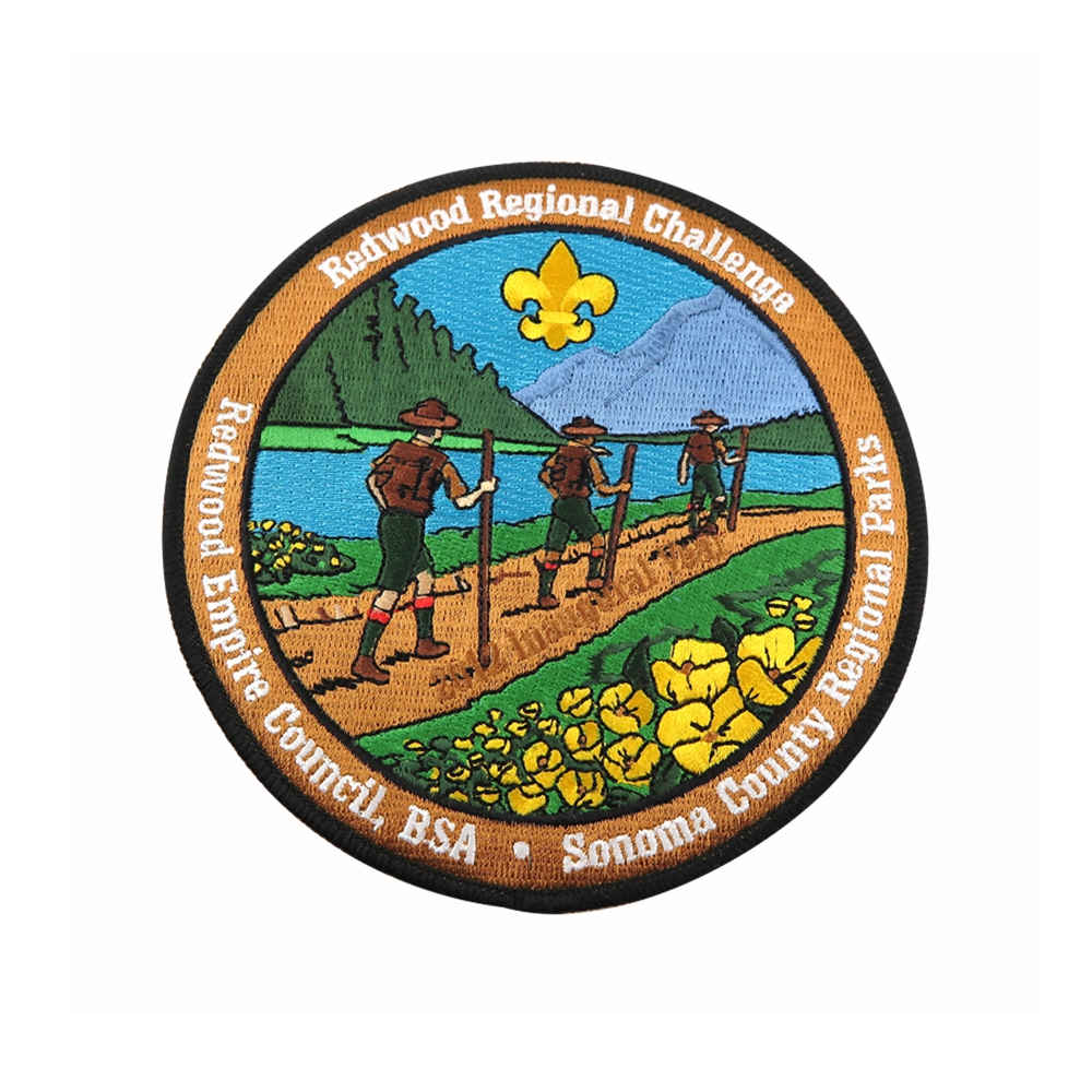 BSA Patches